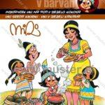 Indian Viki